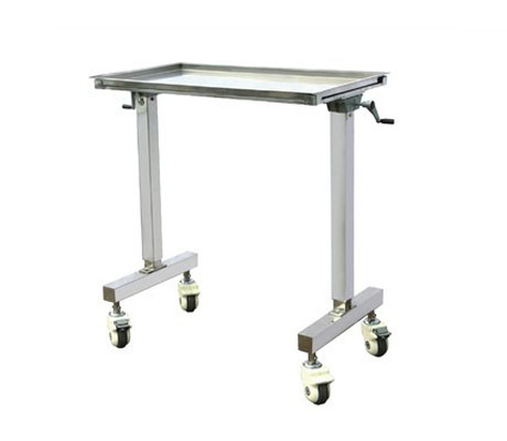 SS Tray Plate Twin Stand Wheel Trolley